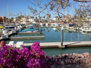 Costa Baja Resort 1