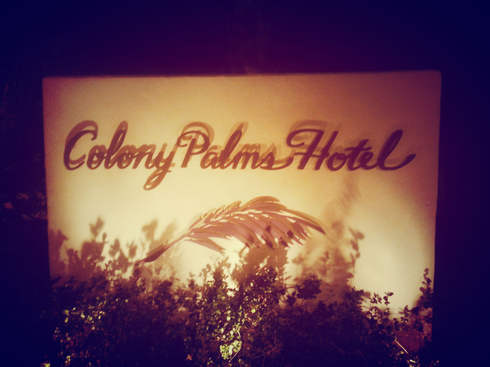 Arriving at Colony Palms Hotel