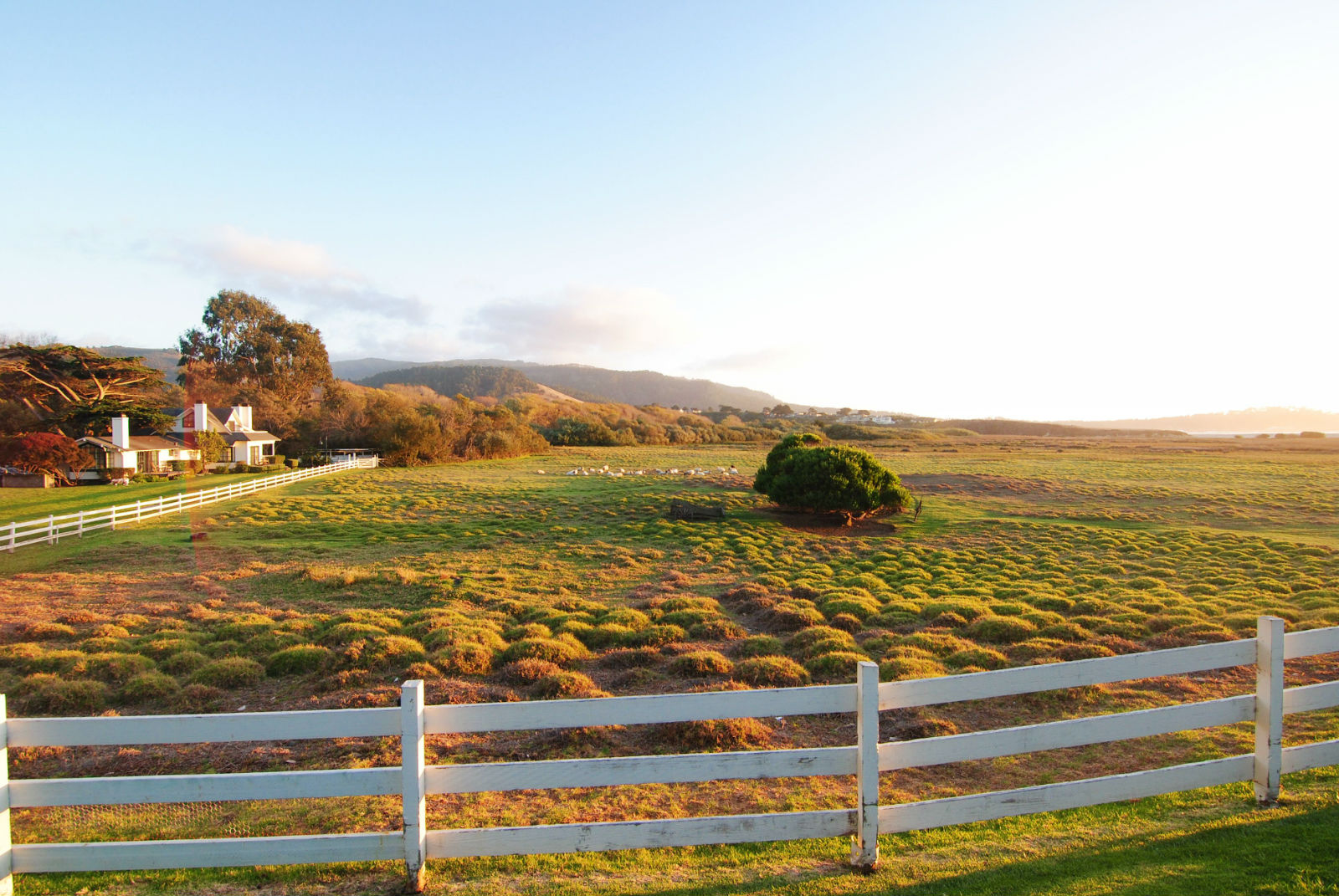 A view from the Mission Ranch Inn