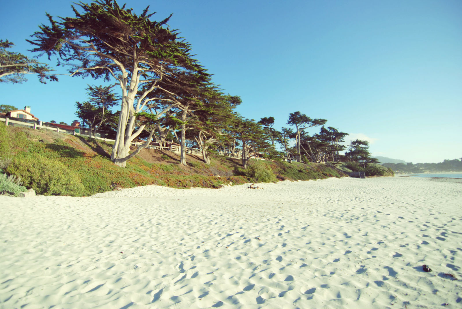 Another view of the Carmel Coast