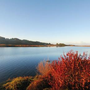 Day 18 – 19 | LivingWells California Road Trip - Sonoma Coast