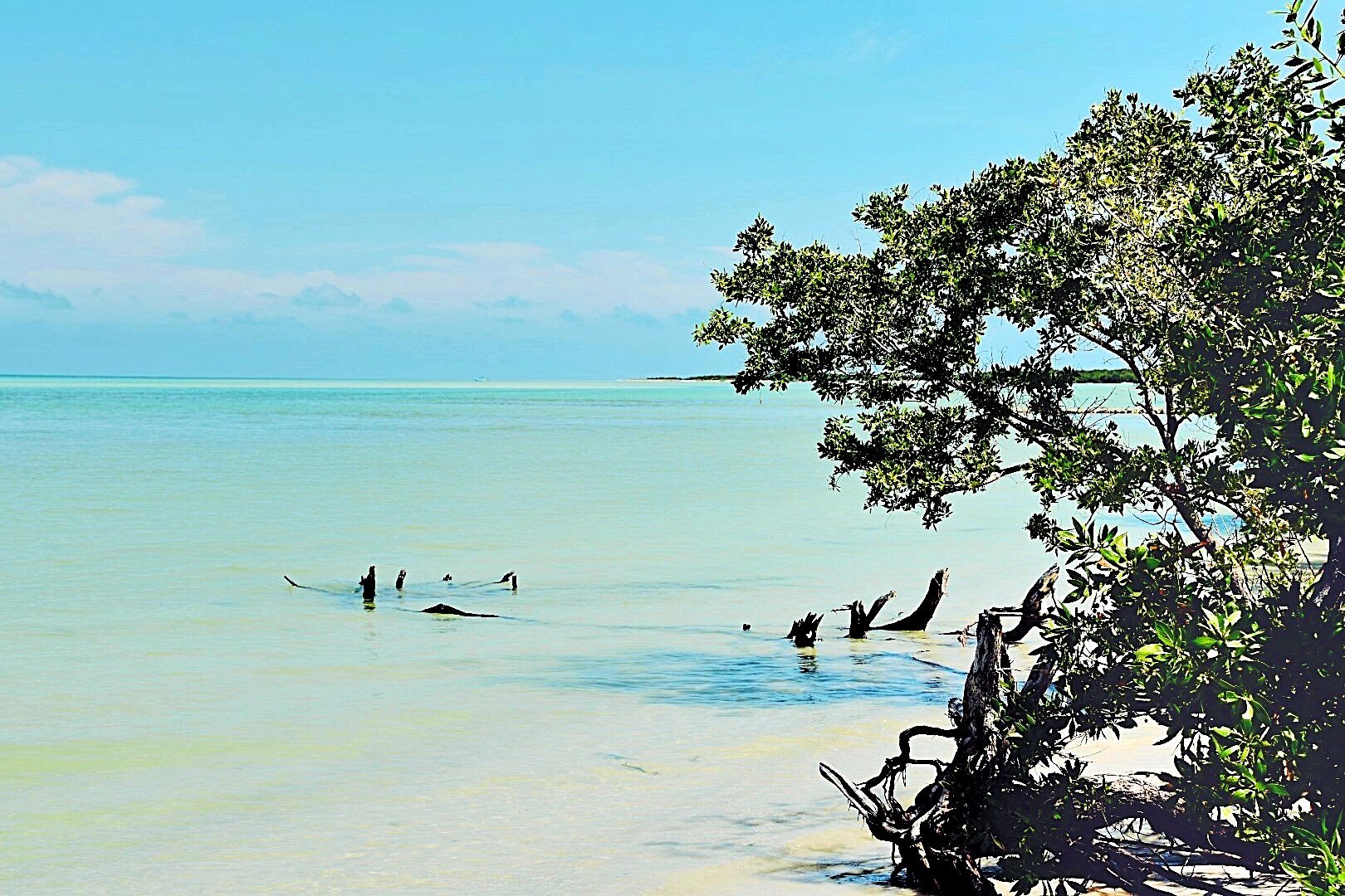 Holbox-Beach-MD