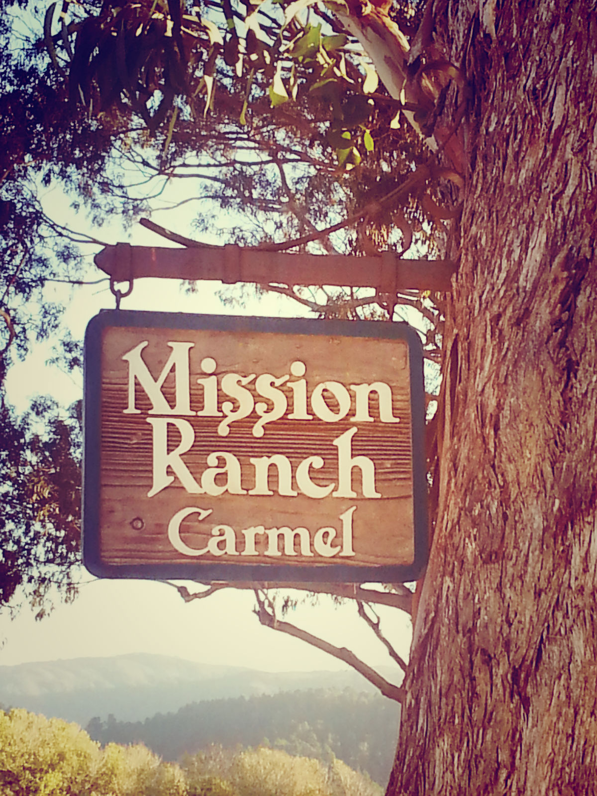 Welcome to the Mission Ranch